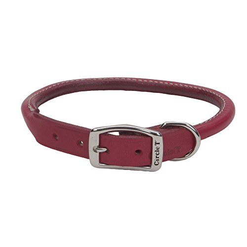Coastal Pet Products Circle T 22 Red 1208 Collar
