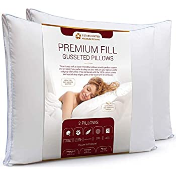 Amazon Com Queen Size Bed Pillows For Sleeping 20x30 2