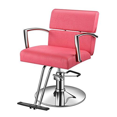 Baasha Pink Salon Chairs for Hair Stylist, Spa Salon Chair, Hydraulic Stylist Chair, All Purpose...