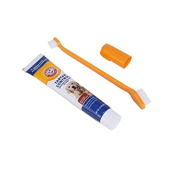 Arm & Hammer Dog Dental Care Tartar Control Kit for Dogs 4
