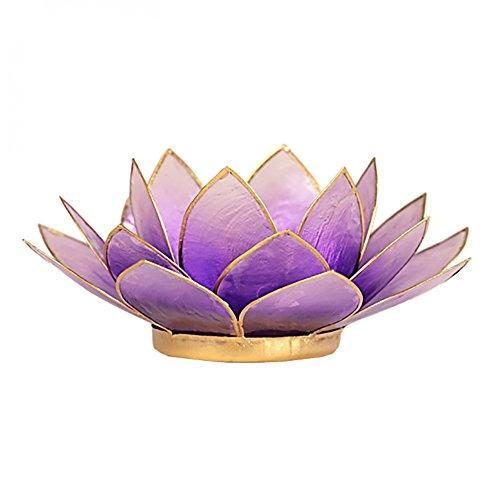 (FindSomethingDifferent Lotus Candle Holder Capiz Shell Light Violet Gold Trim)