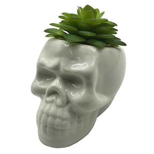 Cuteforyou Cute Skull Shaped Ceramic Succulent Cactus Vase Flower Pot (Plants Not Included)]()