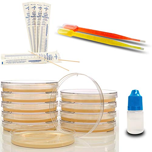 Amazing Bacteria Science Kit - Prepoured Agar Plates Kit - Top Science Fair Project Kit - Superior Bacteria Growth - Award Winning Experiment Ebook - Have Fun While Learning Microbiology Now! (Fast Science Fair Projects For 5th Grade)