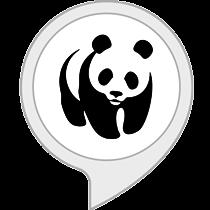 WWF - Quiz