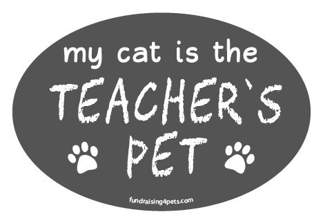 My Cat is the Teacher's Pet oval magnet - gray