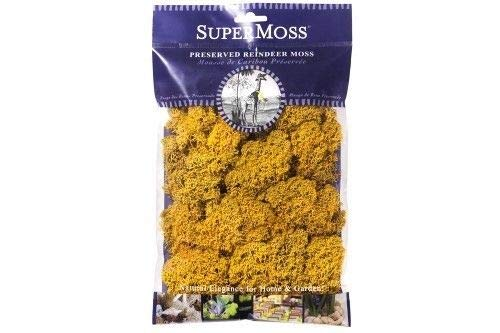 (ShopForAllYou Figurines and Statues My Fairy Gardens Miniature - Reindeer Moss 2oz - Mango Yellow - Supplies Acce.)
