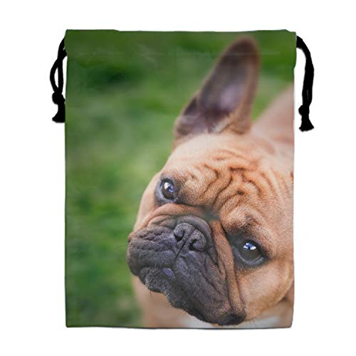 Drawstring Gym Sport Bag Funny French Bulldog Eye-catching Color Travel Bag for Teen Cool -