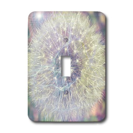 Wish Light Switch Covers (3dRose LLC lsp_33727_1 Making A Wish Vision- Pastel Dandelion- Flowers Single Toggle Switch)