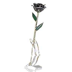 zjchao Gifts fro Her Women 24K Gold Rose Made from Real Fresh Long Stem Roses Flower, Great Anniversary with Gift Box & Stand (Black Rose with Stand)