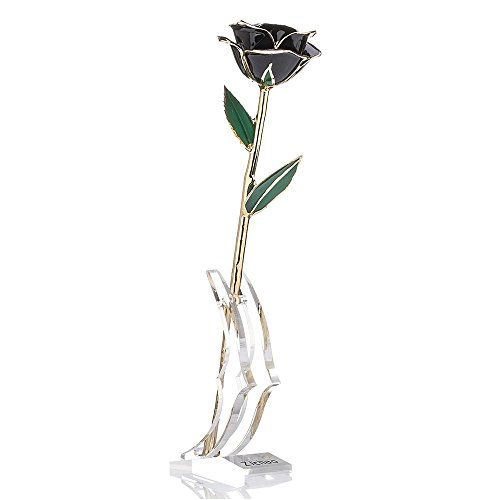 ZJchao Long Stem Dipped 24k Gold Trim Red Rose In Gold Gift Box with stand (black rose with stand) (Special Gift For Him On Valentine Day)