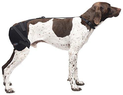 Caldera Pet Therapy Hip Wrap with Gel, Medium, Black by Caldera Pet Therapy