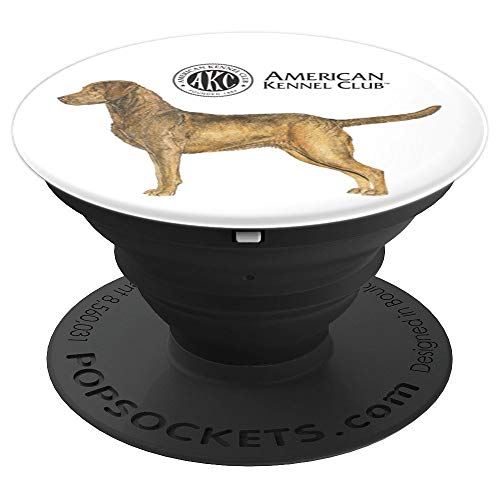 AKC Chesapeake Bay Retriever PopSocket - PopSockets Grip and Stand for Phones and Tablets
