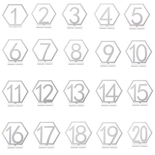 Vegan 1 sets (20 pcs) (Sliver 01#) -
