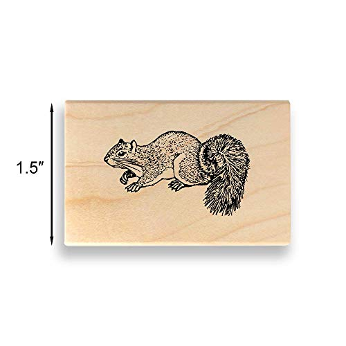 Squirrel Rubber Stamp - Medium Size - 1.5 inches (38mm) Tall. - Select from Several Sizes - Some can be Customized with Text ()