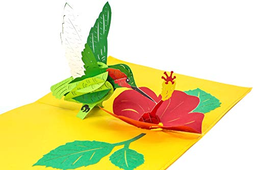 (PopLife Hummingbird and Flower 3D Pop Up Mother's Day Card - Anniversary Pop Up for Mom, Happy Birthday - Cute Gift for Her - Folds Flat - for Sister, for Daughter, for Wife, for Grandma, for Mom)