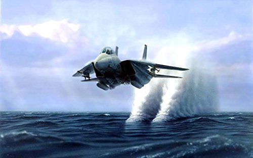 Poster Central Military F-14 Tomcat Wall of Water - 12X18 Metal Aluminum Wall - Wall F-14 Tomcat