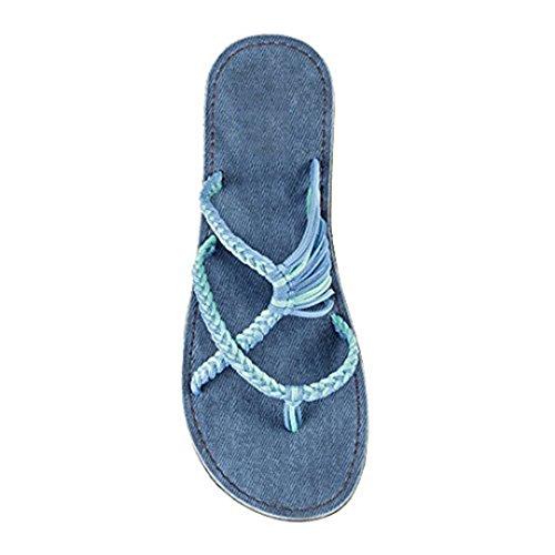 LTX Flip Flops Sandals for Women Summer Shoes Slippers FemaleShoes Beach Shoes Slippers MC460 Cornflower (Ltx Straps)