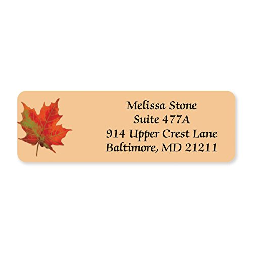 Designer Sheet Address Labels - 4