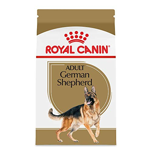 Adult German Shepherd (Royal Canin Breed Health Nutrition German Shepherd Adult Dry Dog Food,)
