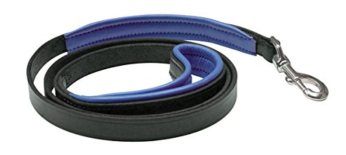 Perri's Skinny Padded Leather Dog Leash, Black/Blue, 1/2