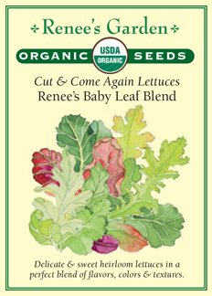 "Lettuce, Cut & Come Again, ""Renee's Baby Leaf Blend"" - Certified Organic Seeds"