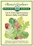 "Lettuce, Cut & Come Again, ""Renee's Baby Leaf Blend"" - Certified Organic Seeds"