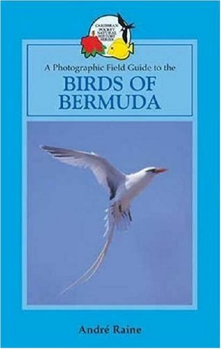 A Field Guide to the Birds of Bermuda (Caribbean Pocket Natural History) pdf epub