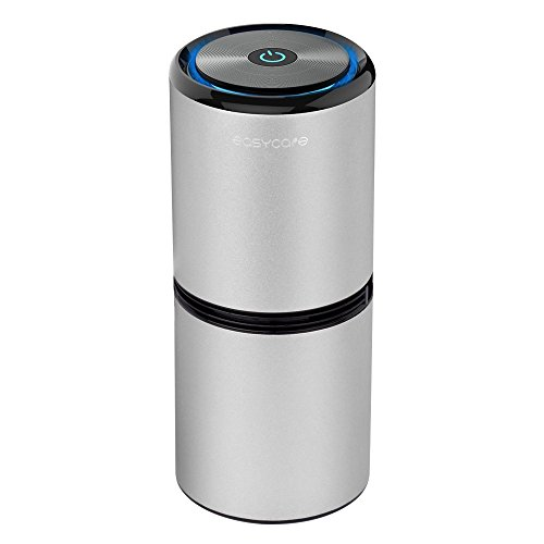 - EasyCare Ionizer Car Air Purifier with 8 Million Negative Ion, Dual USB, Ultra Silent and Night Light, Removes Smoke/Odors/Dust/Bacteria/Pollen (Silver)