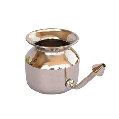 Buy which neti pot is best