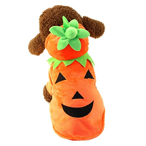 MEWTOGO Pet Durable Fleece Halloween Costume, Pumpkin Pooch Hooded Dog Cat Clothes, Small, Orange