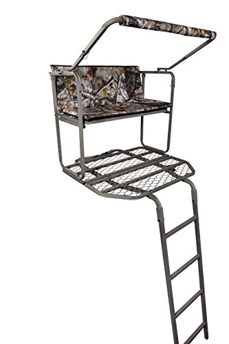 Summit Dual Pro Ladder Stand