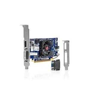 Amazon.com: HP Radeon HD 7450 tarjeta gráfica – 1 GB DDR3 ...