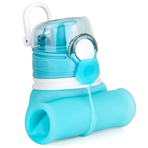 ValourGo Collapsible Water Bottle, Silicone Foldable with Leak Proof Valve BPA Free, Aqua Blue, 21 oz.