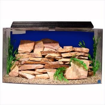 """SeaClear 46 gal Bowfront Acrylic Aquarium Combo Set, 36 by 16.5 by 20"""", Cobalt Blue from SeaClear"""