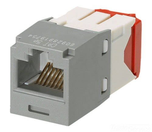 (Panduit CJ5E88TGIG Category-5E 8-Wire TG-Style Jack Module, International Grey)