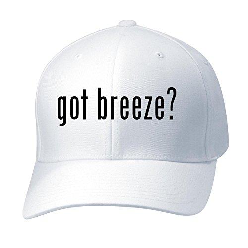 Cool Daily Pellet (BH Cool Designs Got Breeze? - Baseball Hat Cap Adult, White, Small/Medium)