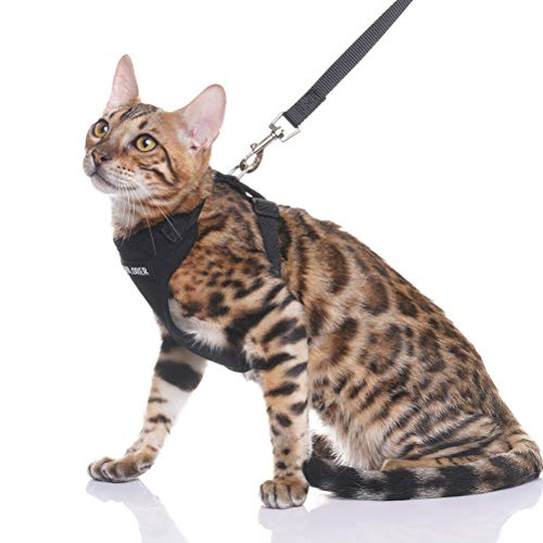 EXPAWLORER Escape Proof Cat Harness with Leash