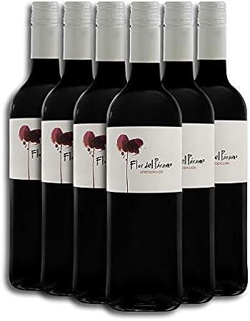 Vino Tinto - Leyenda del Páramo - Flor Del Páramo - Vino Premiado - Caja de 6 botellas de 75 cl. - Envio en caja protectora de alta resistencia para un transporte 100% seguro
