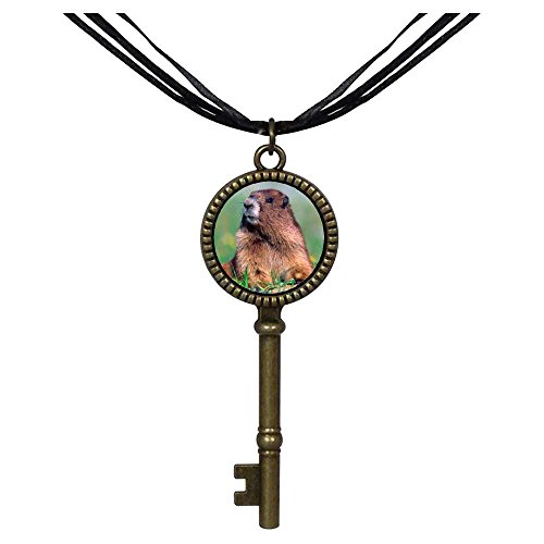 GiftJewelryShop Bronze Retro Style Happy Digging Gopher Jewelry Vintage Key Pendant Charm Necklaces ()