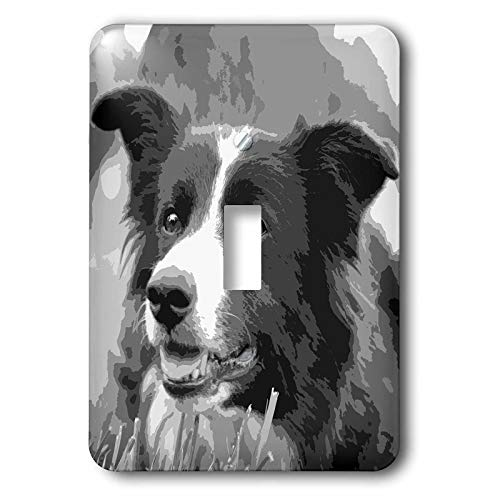 3dRose Stamp City - animals - Black and white photo of a Border Collie with halftone pattern effect. - single toggle switch (lsp_312214_1)