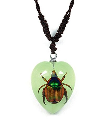 (Heart Shaped Glow In The Dark Necklace w/ REAL Shining Chafer)