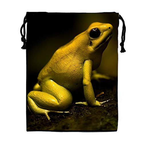 (Animal Poison Dart Frogs Drawstring Travel Shoes Dust Storage Bags)