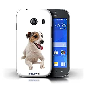 STUFF4 Phone Case / Cover for Samsung Galaxy Ace Style / Jack Russell Terrier Design / Dog Breeds Collection