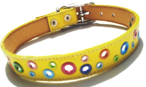 Loki Leather Puppy (The Cool Puppy Loki Puppy Leather Dog Collar - Yellow Xsmall (7-8 inches))