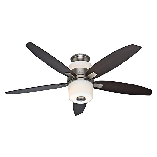 Hunter Fan Company Hunter 59010 Domino 52-Inch Antique Pewter Ceiling Fan with Five Maple/Rosewood Blades and Light Kit, (Downrod English Pewter)