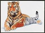 Janlynn Manchurian Tiger Cntd X-Stitch Kit