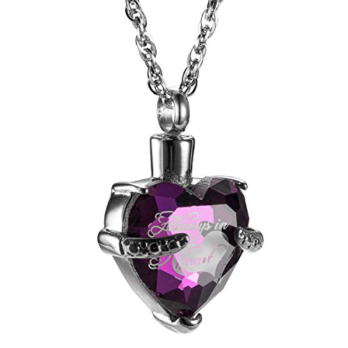 Crystal Heart Keepsake - Always in My Heart with Crystal Glass Cremation Jewelry Urn Necklace Memorial-Ashes Holder Keepsake by AMIST (February)