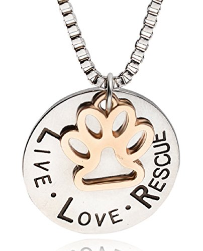 Love Rescue Silver Plated Dog Necklace with Gold Paw Charm on Nice 20