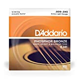 D'Addario EJ41 12-String Phosphor Bronze Acoustic