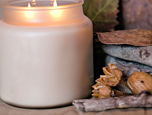 Strong Scented Candles Using Innovative Fragrance Technology. Authentic Vanilla Soy Candle 16oz by Pure Integrity